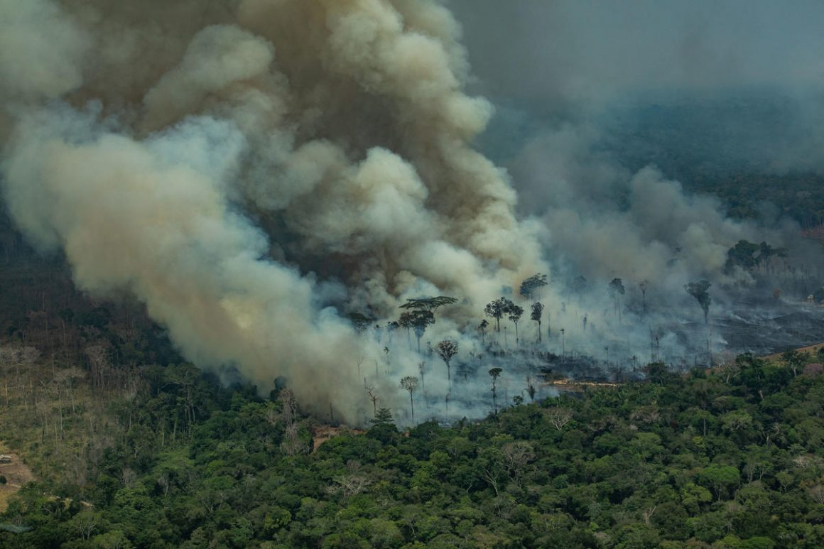 The Amazon Fires: An Environmental Justice Issue